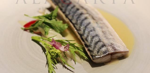 2019-03 Restaurante Etxebarri Verdel Acelgas