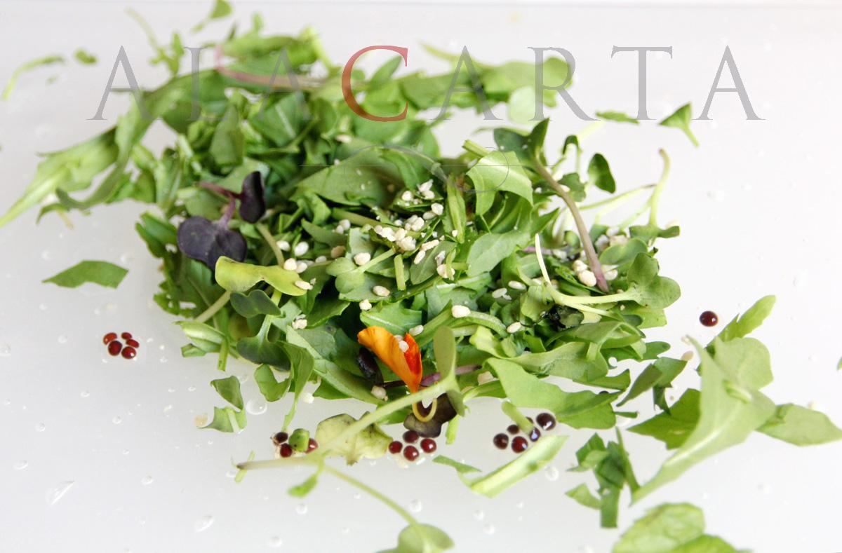 2020-08-08 Crema de mostaza silvestre con hierbas Escaleta