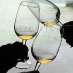 Paolo Bea, Sagrantino DOCG y el origen de los vinos naturales en Italia – Parte I