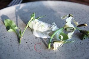 Indewulf Kobe Desramaults erbe con crema acida