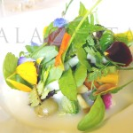 Mugaritz 2008 verduras asadas y crudas