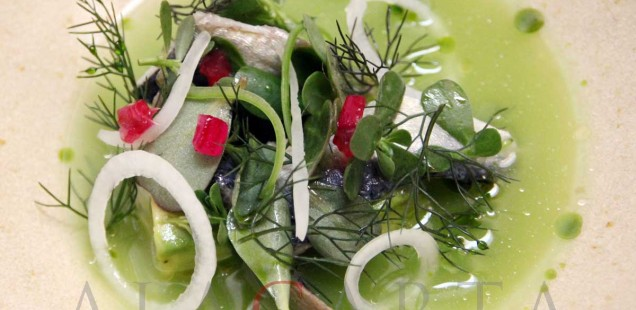 Sardina en salsa verde Quintonil