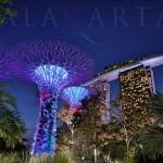 Singapore Marina Bay Gardens logo
