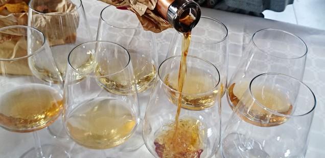 Viniveri degustazione Cossater